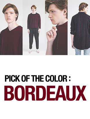 PICK OF THE COLOR:BORDEAUX