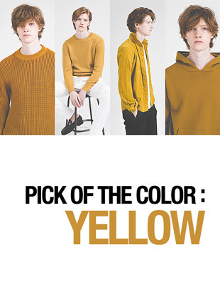 PICK OF THE COLOR:YELLOW