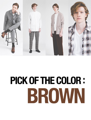 PICK OF THE COLOR:BROWN
